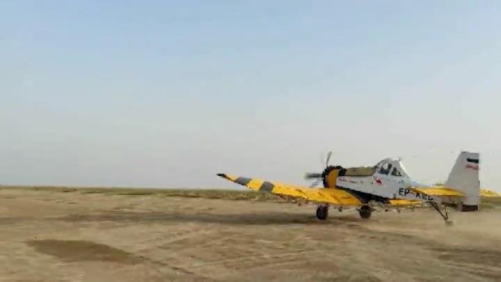 آغاز مبارزه هوایی با ملخهای صحرایی در تالاب جازموریان